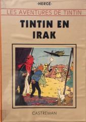 Tintin - Pastiches, parodies & pirates -29TL- Tintin en Irak