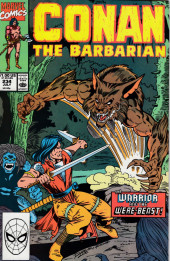 Conan the Barbarian Vol 1 (Marvel - 1970) -234- Death in the Family