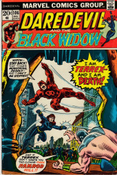 Daredevil Vol. 1 (Marvel - 1964) -106- Life be not proud