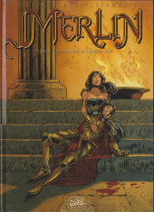 Merlin (Istin/Lambert) -7b- Le chaudron de bran-le-béni