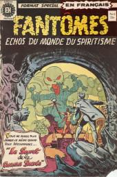 Fantômes - Echos du monde du spiritisme (Éditions Héritage) -6- L'ermite de la caverne de Brimstone