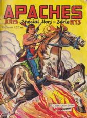 Apaches (Totem Spécial HS, Kris Spécial HS, puis) -13- Silver Scout - La défaite d'Aigle Rouge