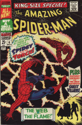 Amazing Spider-Man (The) (1963) -AN04- The Web and the Flame!