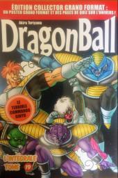 Dragon Ball - La Collection (Hachette) -19- Tome 19