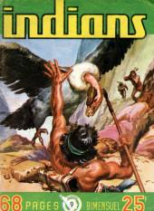 Indians -9- Long Arc : La bataille est terminée...