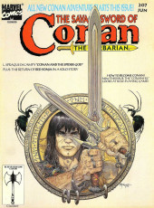 Savage Sword of Conan The Barbarian (The) (1974) -207- (sans titre)