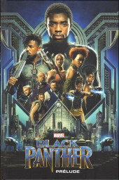Marvel Cinematic Universe  -9- Black Panther - Prélude
