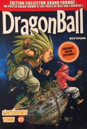 Dragon Ball - La Collection (Hachette) -33- Tome 33