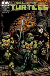 Teenage Mutant Ninja Turtles (2011) -24B- City fall, part. 3