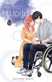 Perfect World -11- Tome 11