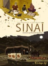 Sinaï - La terre qu'illumine la Lune