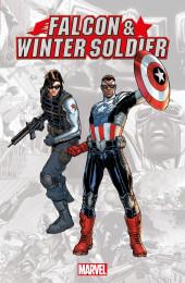 Falcon & Winter Soldier