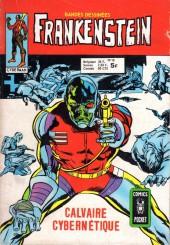 Frankenstein (Arédit - Comics Pocket) -10- Calvaire cybernétique