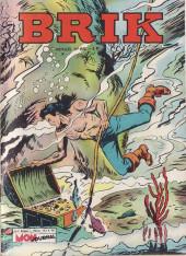 Brik (Mon journal) -82- La cassette à la mer