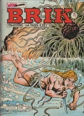 Brik (Mon journal) -177- Fou ! Fou ! Fou !