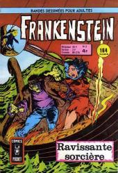 Frankenstein (Arédit - Comics Pocket) -2- Ravissante sorcière