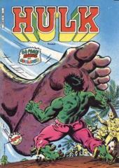 Hulk (5e Série - Arédit - Flash Nouvelle Formule) -9- A chacun son destin