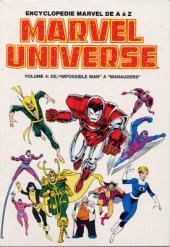 Marvel Universe (LUG) -4- Volume 4: De