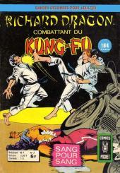 Richard Dragon - Combattant du Kung-Fu (Arédit) -3- Sang pour sang