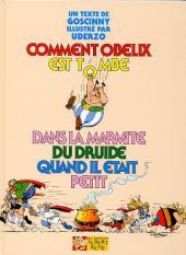 Astérix (Hors Série) -2b- Comment Obélix est tombé dans la marmite du druide quand il était petit