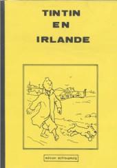 Tintin - Pastiches, parodies & pirates -3a- Tintin en Irlande