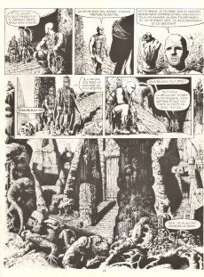 Extrait de Les armées du conquérant - Tome 1a81