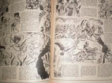 Extrait de Durga Râni -3- L'appel du maître