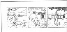 Extrait de Tintin - Pastiches, parodies & pirates -1997- Dindin et le secret de Moulinsal