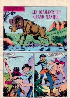 Extrait de Rin Tin Tin & Rusty (2e série) -119- Les diamants du Grand Manitou