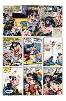 Extrait de Conan the Barbarian Vol 1 (Marvel - 1970) -38- The warrior and the were-woman!