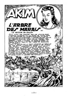 Extrait de Akim (1re série) -144- L'arbre des marais