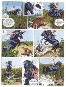 Extrait de Étalon noir (Les aventures de l') -1- L'étalon Noir