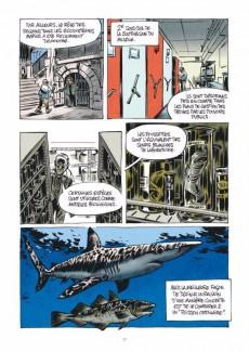 Extrait de La petite Bédéthèque des Savoirs -3- Les Requins - Les connaître pour les comprendre