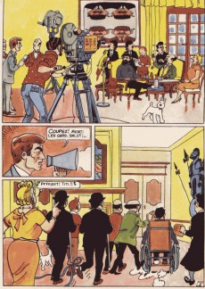 Extrait de Tintin - Pastiches, parodies & pirates -d- La vie sexuelle de Tintin