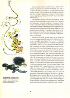 Extrait de Marsupilami -HS- L'encyclopédie du Marsupilami