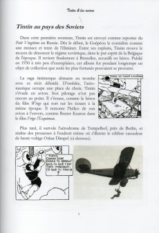 Extrait de Tintin - Pastiches, parodies & pirates -Pir a- Tintin & les avions