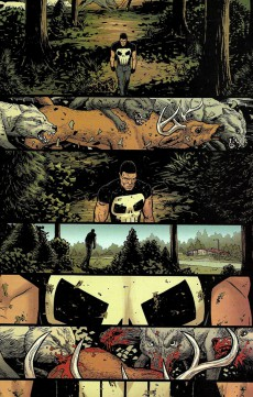 Extrait de Punisher (2016) (The) -7- Into The Wild