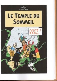 Extrait de Tintin - Pastiches, parodies & pirates - L'oreille cassée - Les aventures du type qui se fourre toujours dans des situations pas possibles