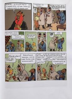 Extrait de Tintin - Pastiches, parodies & pirates -29TL- Tintin en Irak