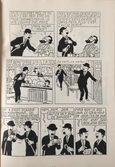 Extrait de Tintin - Pastiches, parodies & pirates - Les 7 boules de cristal