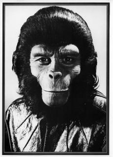 Extrait de Planet of the Apes (Marvel comics - 1974) -10- Beneath the Planet of the Apes!