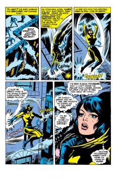 Extrait de Cat (The) (Marvel - 1972) -2- The Owl and the Pussycat