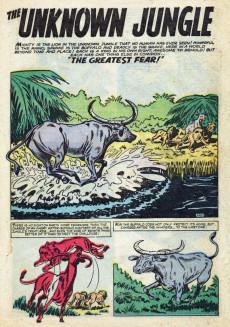 Extrait de Jann of the Jungle (Atlas - 1955) -15- (sans titre)