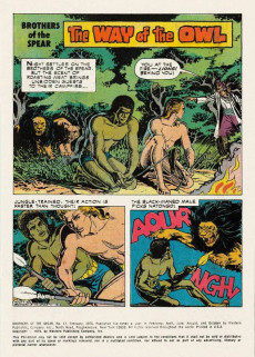Extrait de Brothers of the Spear (Gold Key - 1972) -17- The Way of the Owl