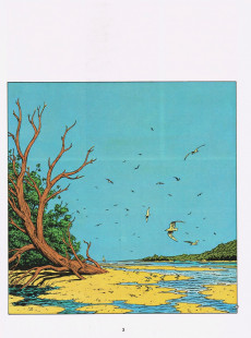 Extrait de Simon du Fleuve -7- Les chemins de l'Ogam