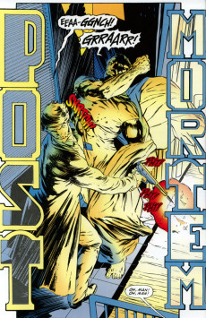 Extrait de Punisher: Year one (1994) -2- Book two