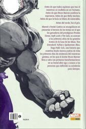 Verso de Hulk - Gris -INT- Hulk: Gris