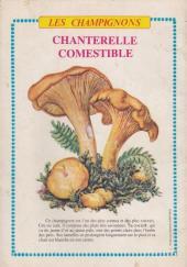 Verso de Rin Tin Tin & Rusty (2e série) -130- Un Noël pas comme les autres