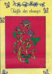 Verso de Titi (Poche) -69- Chat... stucieux !