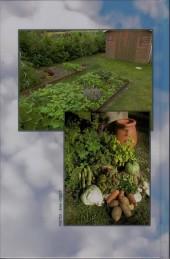 Verso de Variations culinaires -2- Variations culinaires - T2